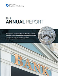 Report to Congress on Preserving and Promoting Minority Depository Institutions 2018 Cover Image